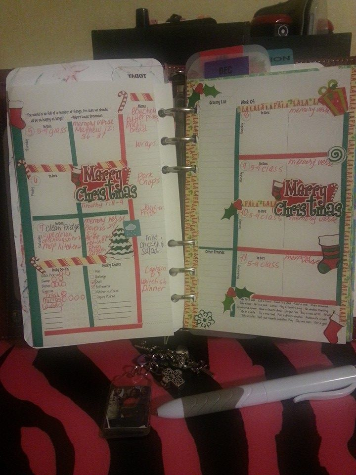 Finished Insert From My Malibu Daytimer Planner Ruby  This
