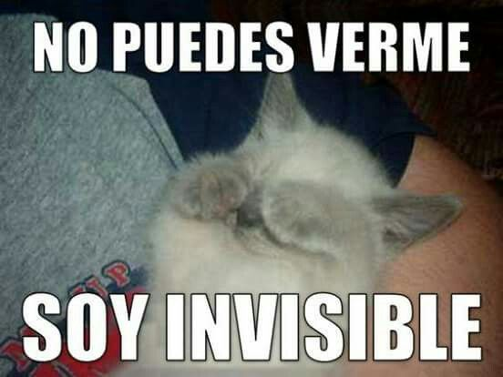 Pin By Kirby Kenny On U Funny Spanish Memes Spanish Teacher Memes Spanish Memes