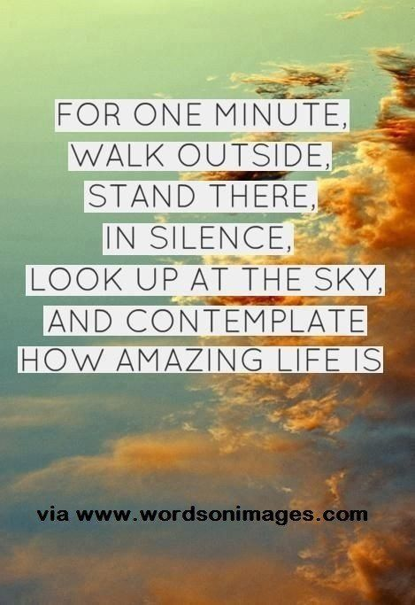 Amazing Quote About Appreciating Life Signs Quotes Life Quotes Delectable Quotes About Appreciating Life