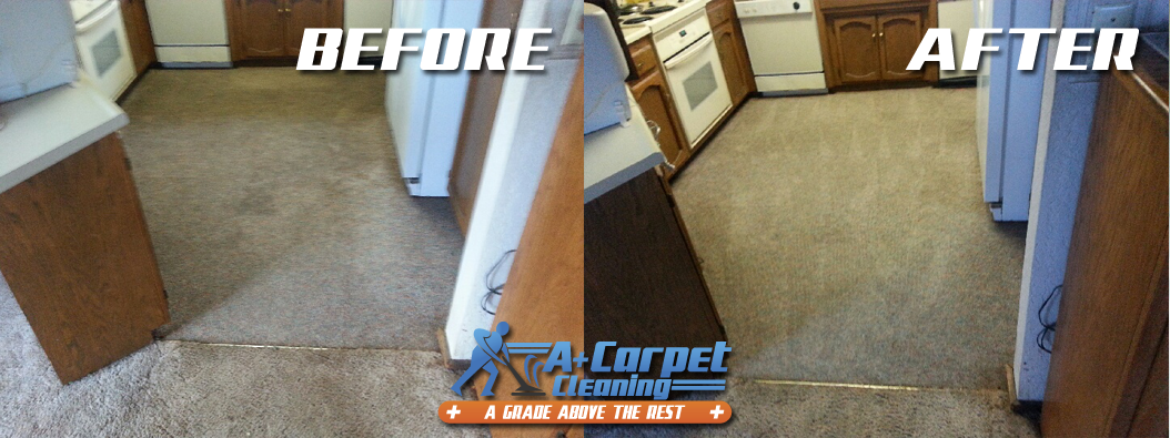 Professional Truck Mount Carpet Cleaning Before And After Shoot 50 For A Plus Carpet C Carpet Cleaning Pet Stains Carpet Cleaning Solution How To Clean Carpet