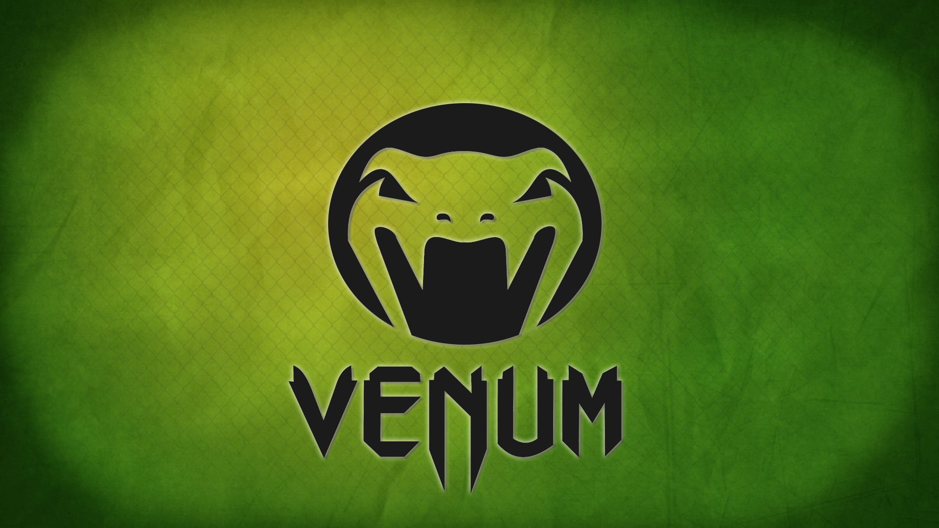 ekipirovka ufc mma logo fights venum 2012 brands