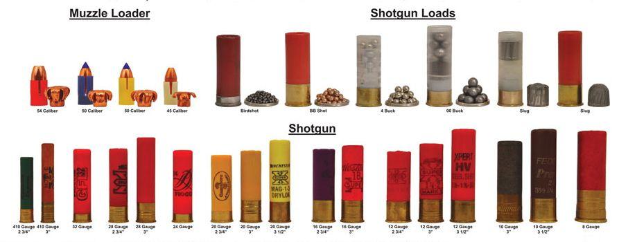 Pin by Rich Brown on Ballistics Shotgun, Guns, Firearms