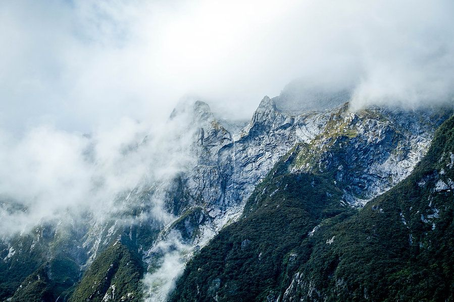 Milford Sound South Island, NZ