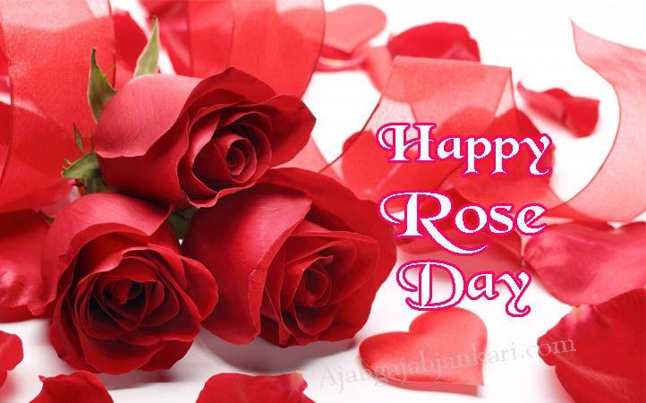 Happy Rose Day 2020 Shayari in Hindi, रोज डे शायरी Rose