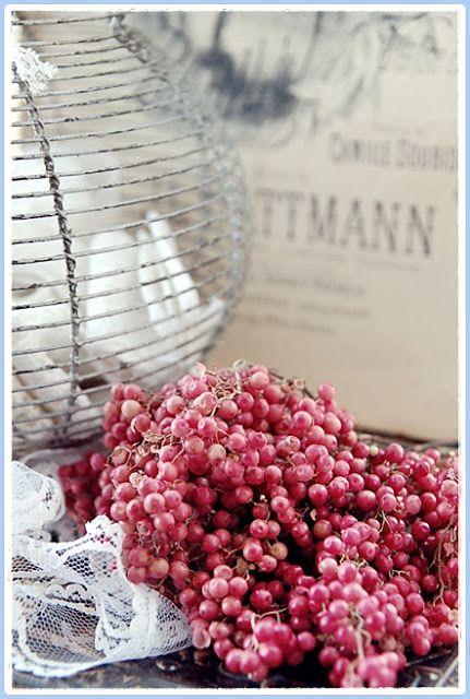 een sneller kloppend hart ♥: ~ een bloemetje  peperbesjes op woensdag ~