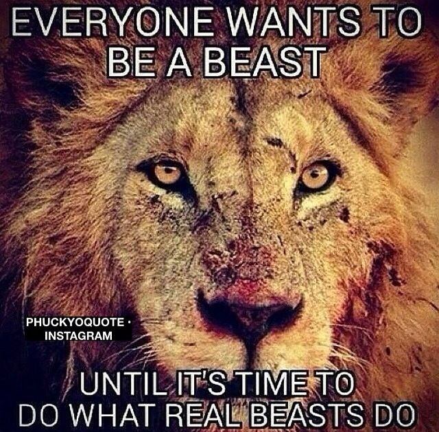 Survival Of The Fittest Motivational Memes Beast Warrior Quotes