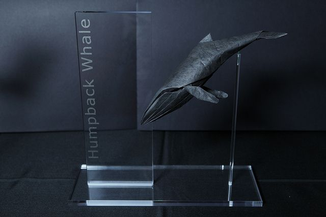Very Cool Origami Humpback Whale