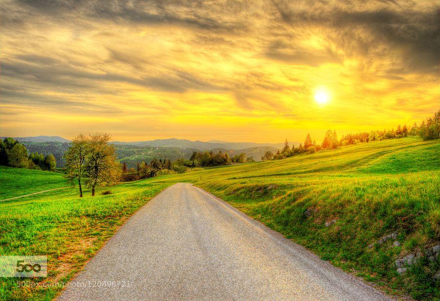 Sunny road by rudimajerle #nature