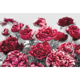 Brewster Wallcovering Ideal Decor Floral Mural Xxl4-002