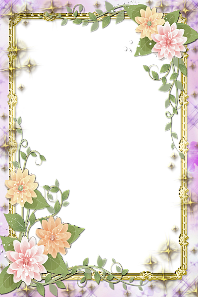 Transparent Flowers Frame Source Galleryyopriceville