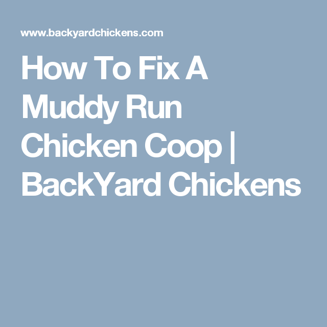 How To Fix A Muddy Run Chicken Coop