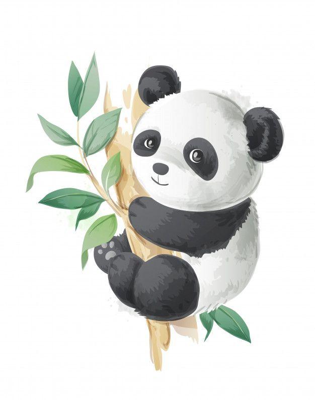 Cute cartoon panda on a tree illustration Premium Vector   Free Vector #Freepik #vector #freewatercolor #freevintage #freetree #freenature