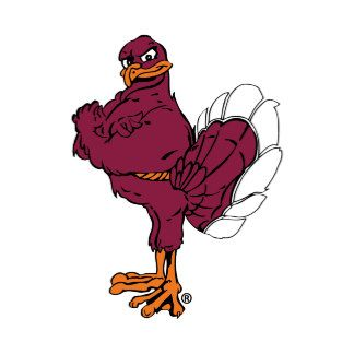 Virginia Tech Hokie   Hokies, Virginia tech, Hokie bird