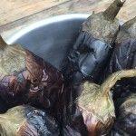 Preserving Eggplants for Winter Eating