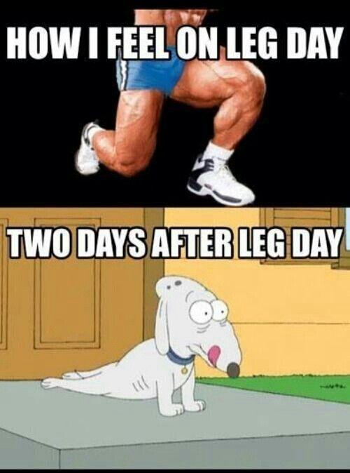 how to make leg day fun