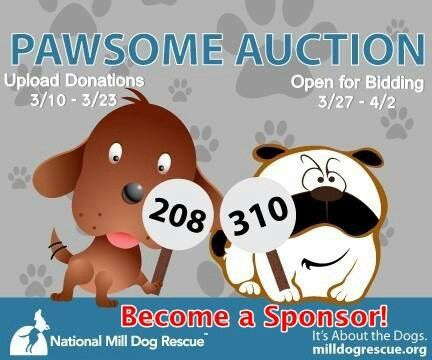 Auction Rescue Dogs Dog Rescue Fundraising Auction Fundraiser