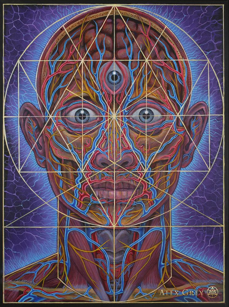 Human Geometry Alex Gray Art Sacred Geometry Art Alex Grey