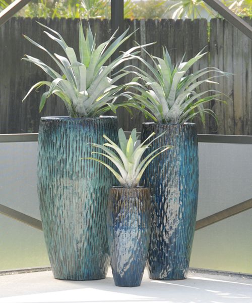 South Florida Tropical Landscape Ideas Planter Container: Silver Bromeliads Are Planted In These Beautiful Blue Pots