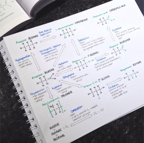 How to study orgo reactions