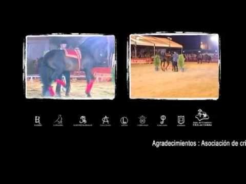 Córdoba Ecuestre - YouTube
