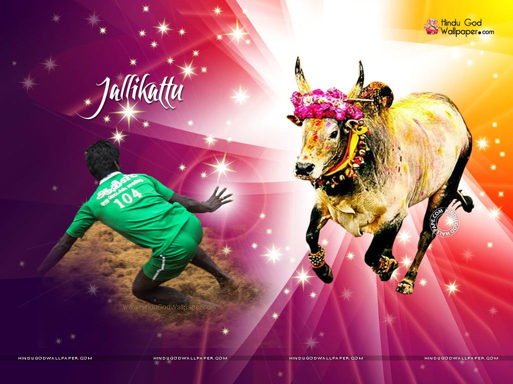 Jallikattu Kaalai Wallpapers Wallpaper Free Download Happy