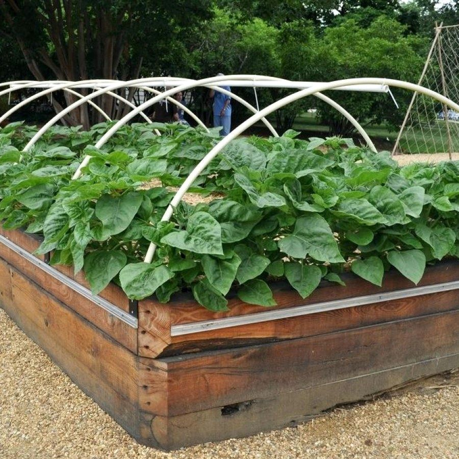 easy diy raised garden ideas you should try raised garden bed