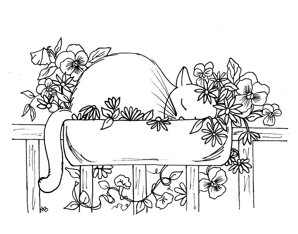 Cat and flower coloring pages - Adult Coloring Page Digital Download Cat Flowers Pansies Garden Sleeping Cat Flower Box Pen And Ink Nature