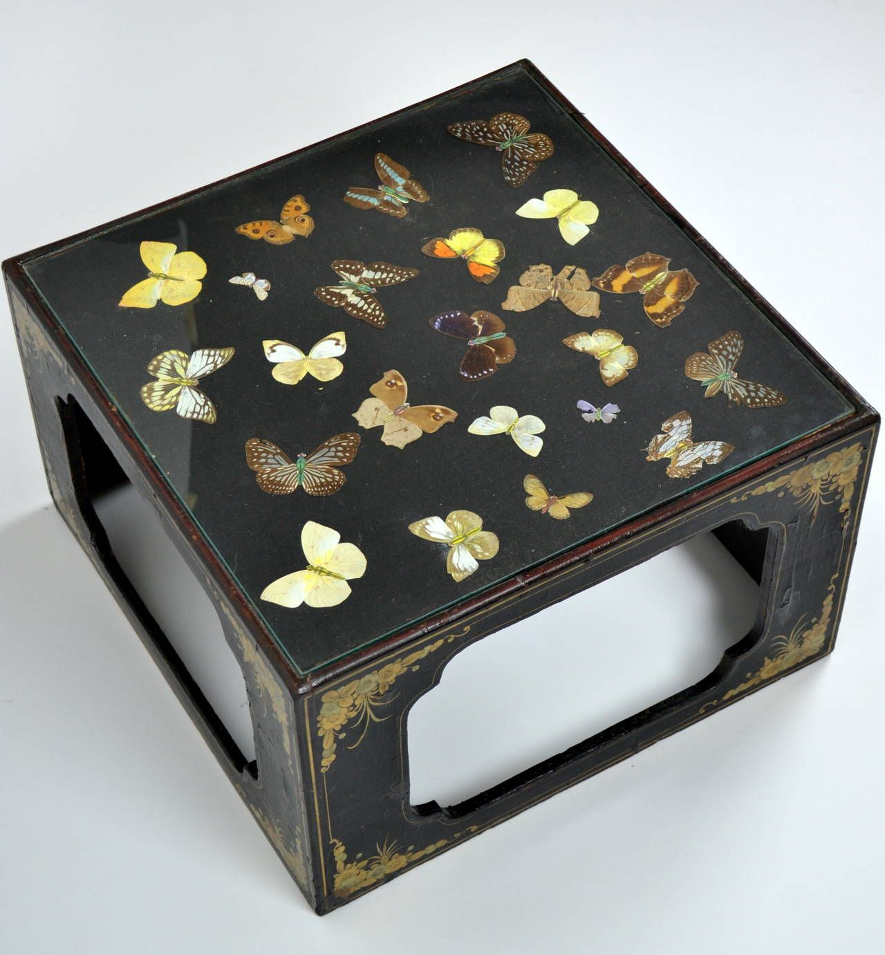 Display Case End Table Japanned Edwardian Butterfly Specimen Display Case Or End