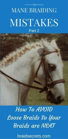 MANE BRAIDING MISTAKES Part 2 - HOW TO AVOID LOOSE BRAIDS #loosebraids MANE BRAIDING MISTAKES - LOOSE BRAIDS. Click through to learn my secret weapon for creating tight, neat braids on your horse. #loosebraids