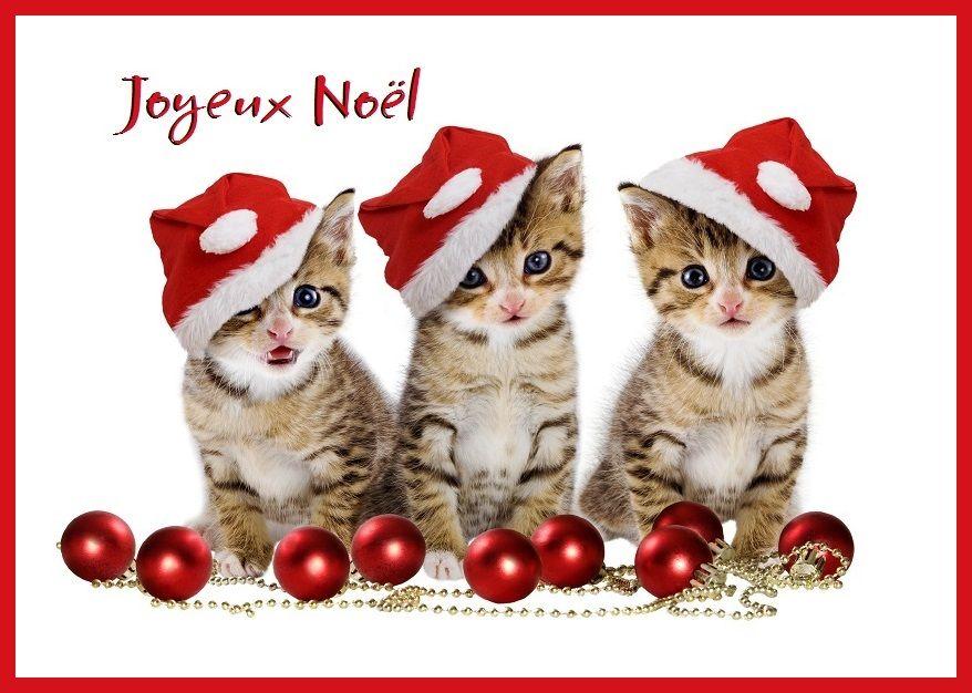Cartes De Noel Gratuites