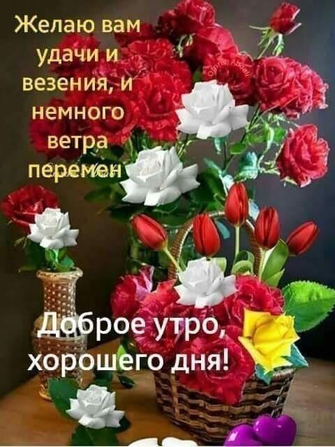 Kartinki Dobroe Utro Natasha 28 Foto S Izobrazheniyami