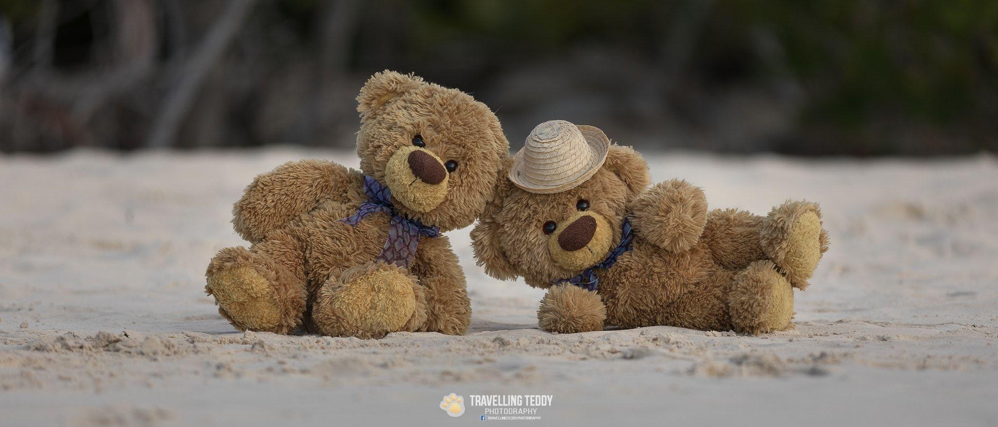 BearTatty NullTeddy Bear And Sulla spiaggia 0XPnwOk8