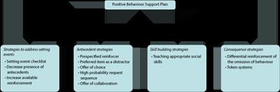 strategies for challenging behavior in preschool pdf