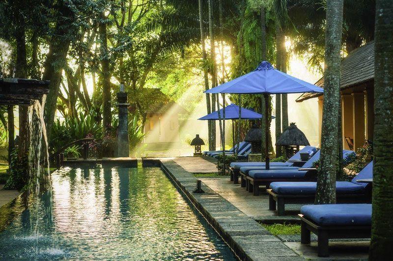 13 Hotel Bernuansa Alam Di Bogor Puncak Dengan Sensasi Menginap Di Tengah Hutan Pemandangan Resor Hotel