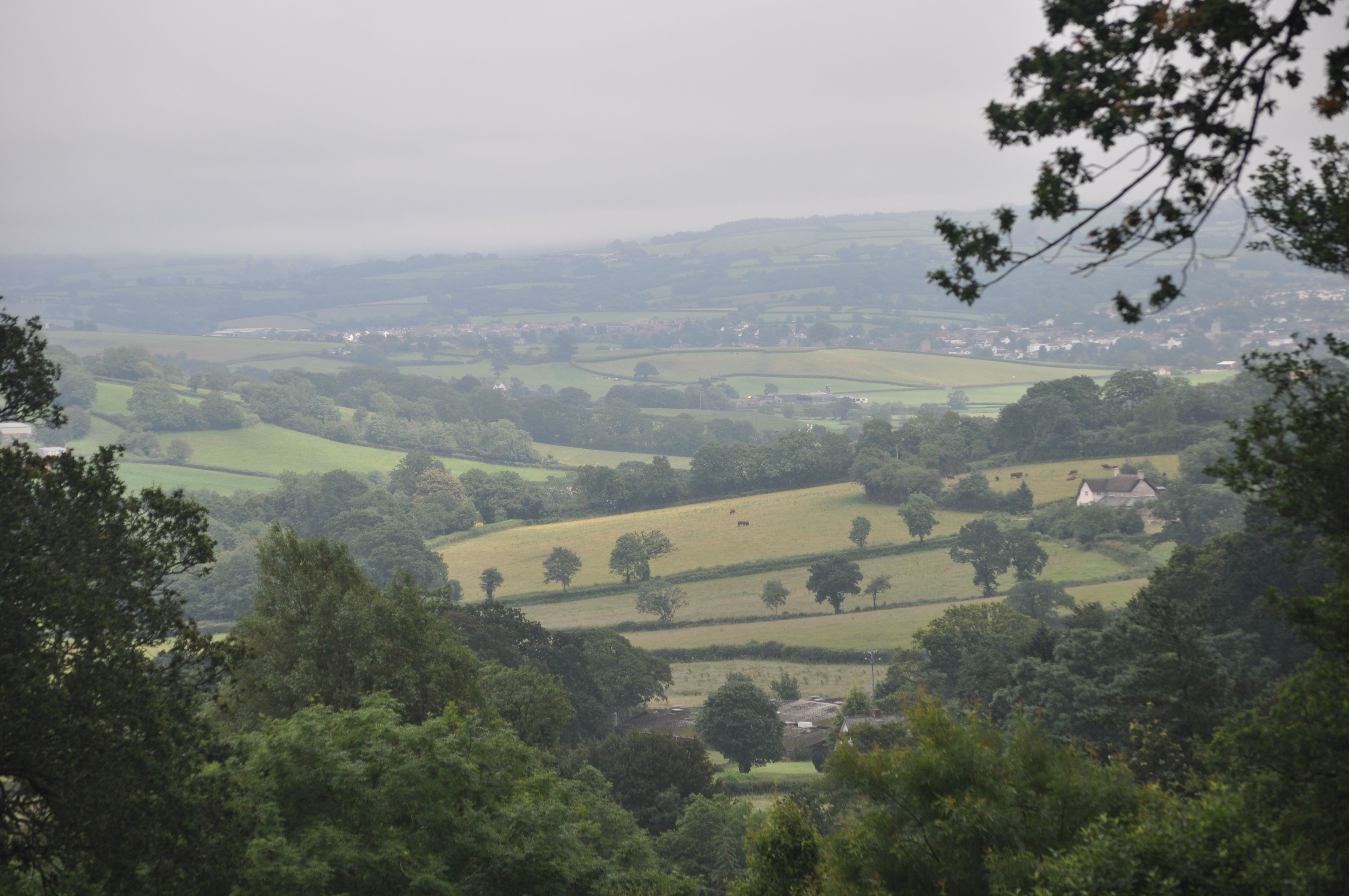 A view over East Devon Countryside. Extract colours from Earthborn ...