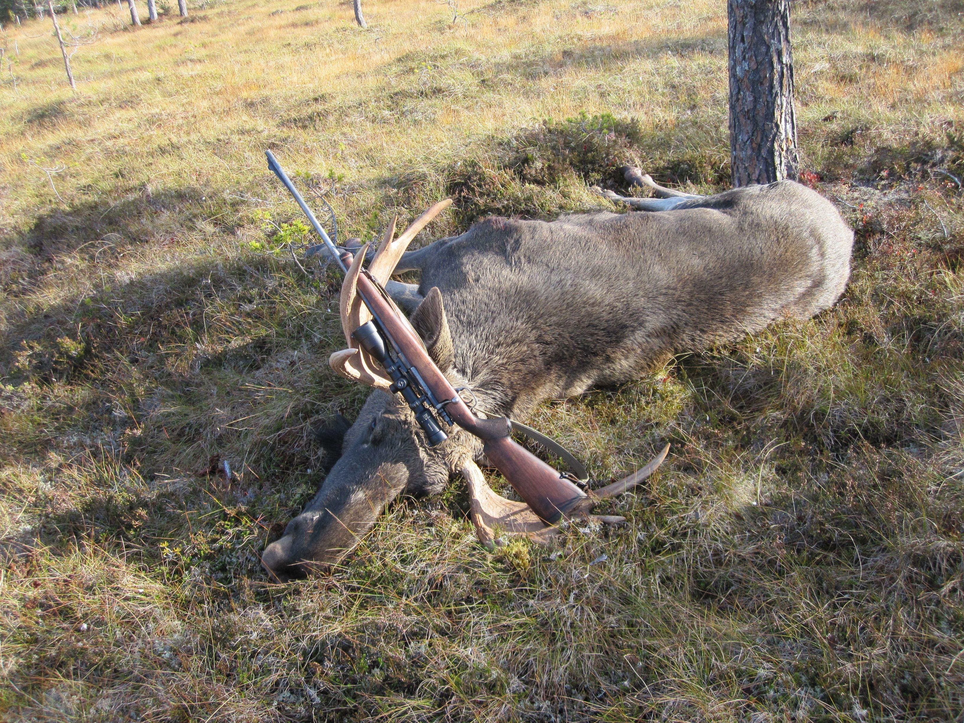 Husqvarna 1640 30-06 - 9 tagger