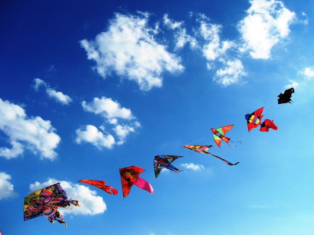 Aquiloni nel cielo azzurro