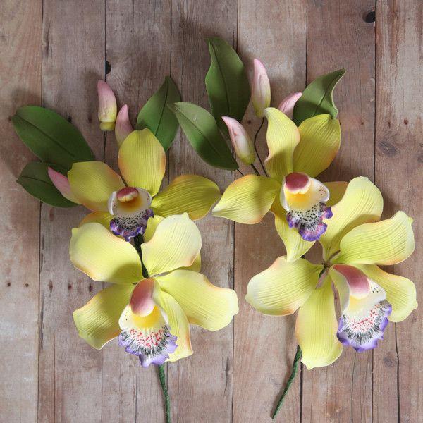 Cymbidium Orchid Sprays Yellow Orchids Cymbidium Orchids Orchid Flower