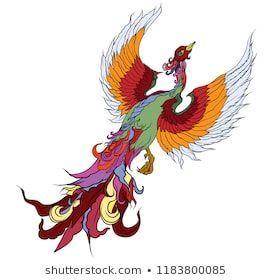 "Stock vektor ""Hand Drawn Chinese Peacock Tattooasian Phoenix"" (bez autorských poplatků) 1183800085,  #autorských #bez #Chinese #drawn #Hand #peacock #Phoenix #phoenixtattoohand #poplatků #Stock #tattooAsian #Vektor"