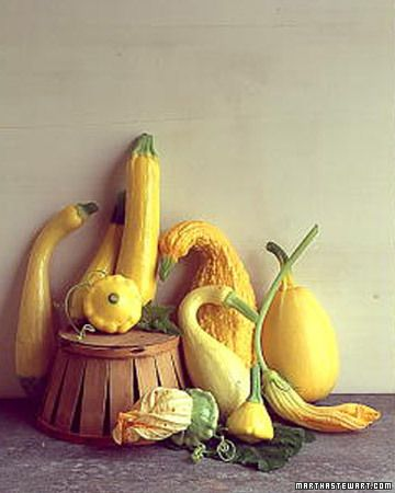 How to Grow Summer Squash by marthastewart #Summer_Squash #Vegetable_Growing_Guide #marthastewart