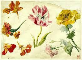 jan van huysum flowers - Recherche Google