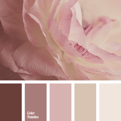 Soft And Delicate Colors The Pastel Shades Of Pink Cream