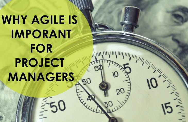 Why Agile is Important for IT Project Managers Project Management