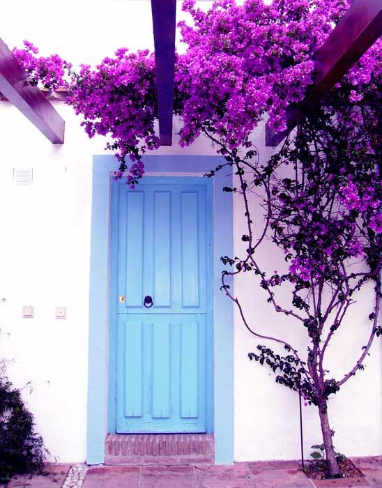 The blue terrace door leading to the terrace, La Palmera Time To
