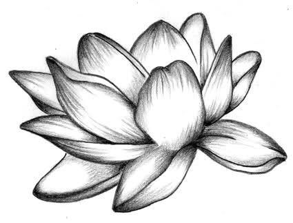 Fiore Di Loto Disegno Cerca Con Google Fiori Disegnati A
