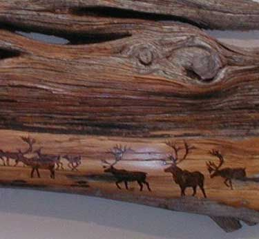 Kathleen art pyrography | Detail of Caribou on Red Roan Cedar - pyrography by Kathleen Marie