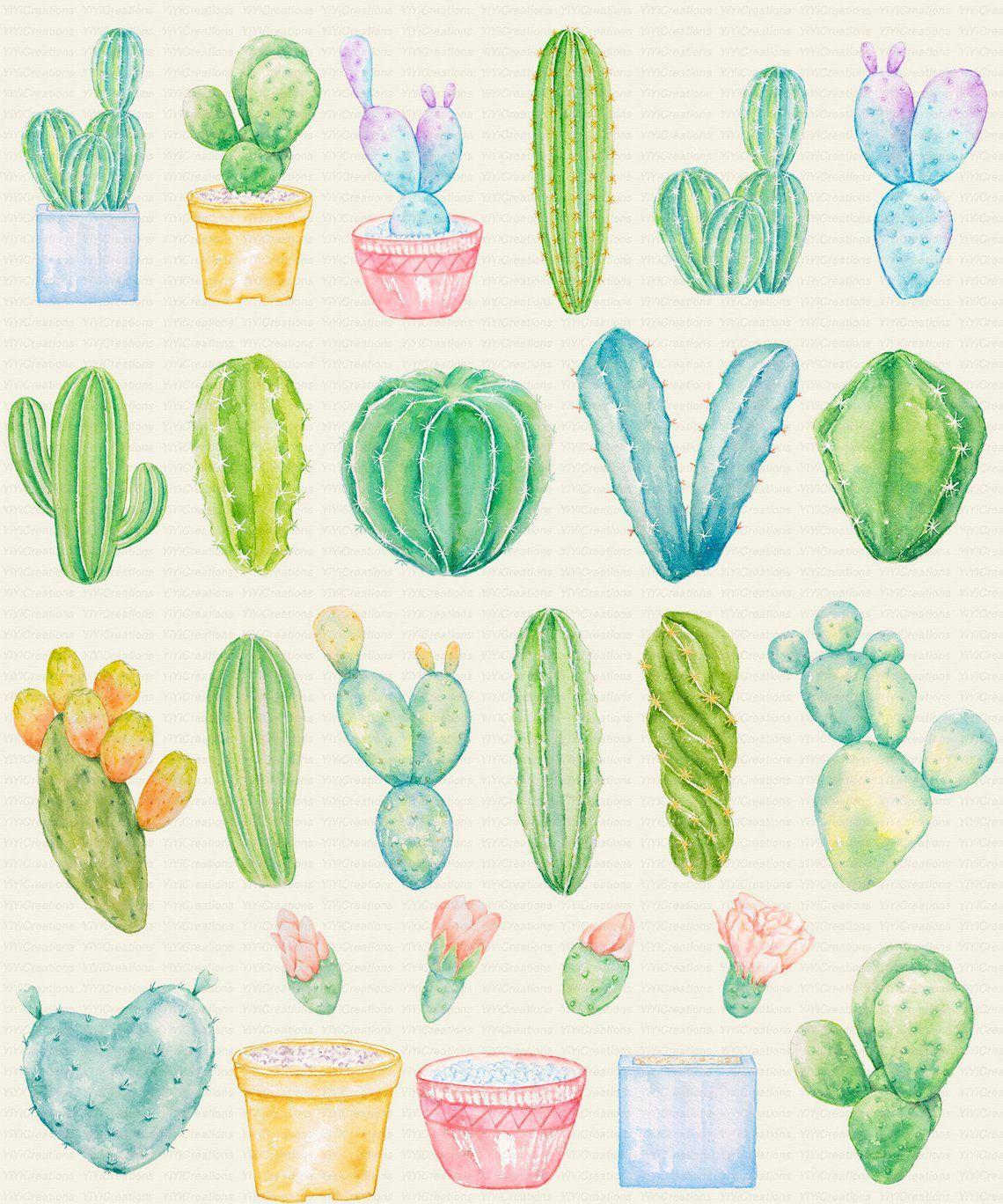 Watercolor Greenish Cactus Clipart Cacti Border Design Tropical