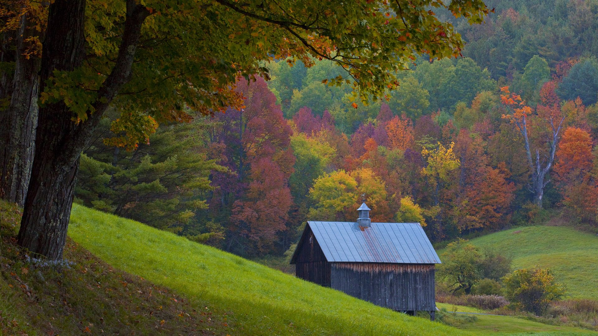 Fall Foliage Wallpaper Screensavers Vermont Autumn Wallpapers Hd Free 34984 The Hd