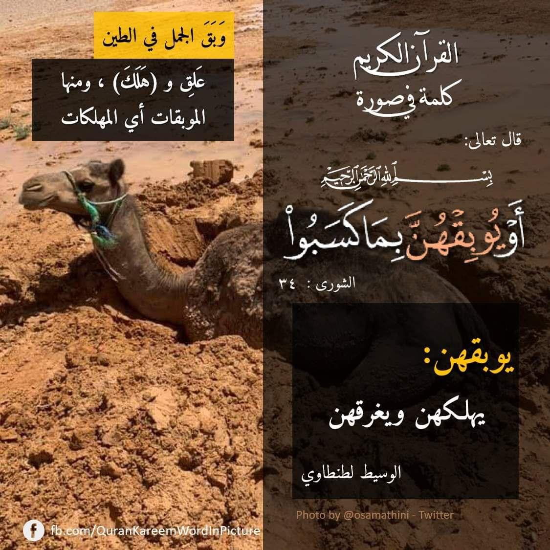 ی وب ق ه ن وحيدة في آية الشورى ٣٤ أو يوبقهن بما كسبوا ويعف عن كثير يوبقهن يهلكهن In 2021 Quran Tafseer Quran Photo