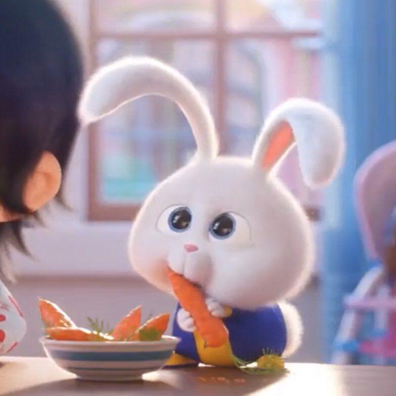 Snow Ball おしゃれまとめの人気アイデア Pinterest メ うさぎ ペット ペット映画 アニメ ステッカー